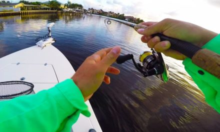Lunkers TV – The Biggest Snook of My Life