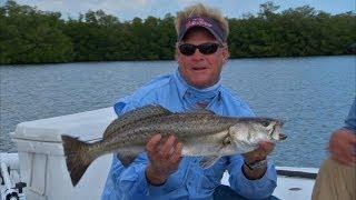 Vero Beach Redfish Fishing the Flats with DOA Baitbuster Lure