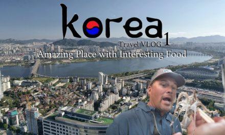 Scott Martin Pro Tips – Amazing City and I Ate This ALIVE – FLW Korea Series Pt. 1