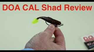 Salt Strong | – DOA CAL Shad Review (including underwater demo footage)
