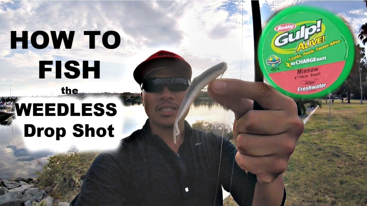 How to Catch Bass on (WEEDLESS) Drop Shot