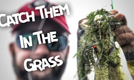 How to Find Bass in Lakes Filled with Grass, Weeds, or Mats
