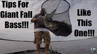 Lake Fork Fall Bass Fishing Tips Complete Guide To Big Spoons Angler Hq