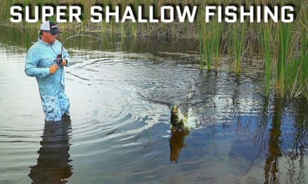 Scott Martin Pro Tips – Super Shallow Fishing… Epic Day!