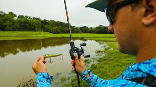 Lawson Lindsey – This TINY Pond Has GIANT FISH