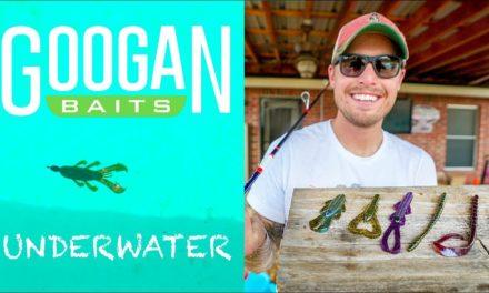 Lunkers TV – Underwater Googan Bait Action