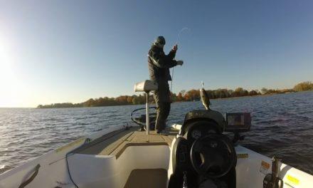 Winter Bass Fishing – Deep Crankbaits