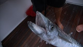 Deep Sea Fishing for Smoker Kingfish in Key West Florida Keys