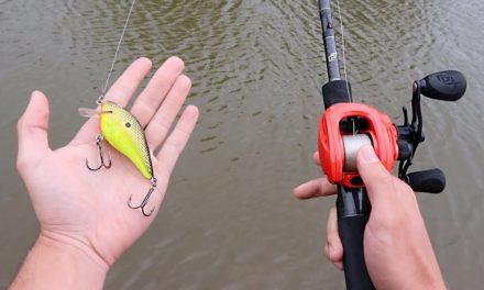 How To Fish Crankbaits (Bass Fishing Tips)