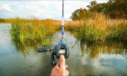 Lunkers TV – I Love Fishing Like This!!