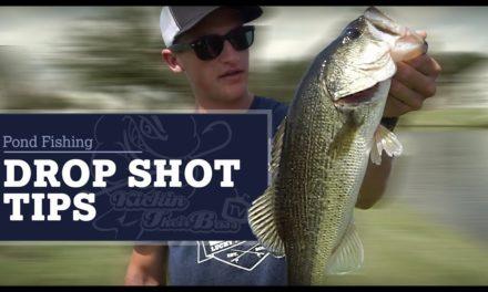 Pond Fishing In My Backyard – Drop Shots