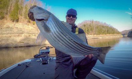 Winter Bass Fishing – Lake Cumberland