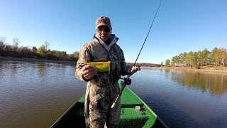 Bass Fishing With The Strike King River Bug