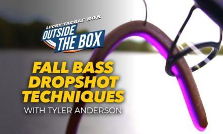 Dropshot Techniques for Fall Bass Fishing