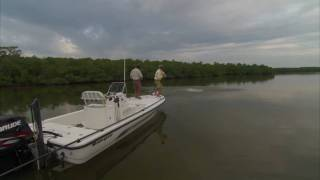 Everglades Backcountry Fishing for Tarpon with DOA BFL Lure