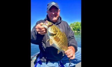 Fat baby finesse worm bass- new season peek