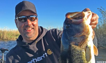 Zona's AWESOME Dock Fishing Secret Tips