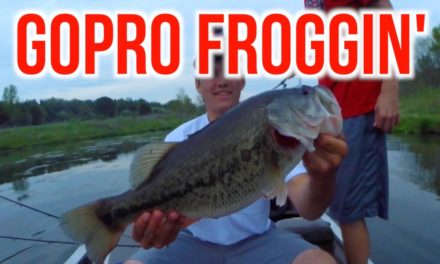 Flair – Catching GIANT BASS on FROGS – Bass Fishing