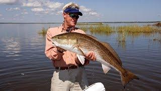 Mosquito Lagoon Redfish Fishing with DOA CAL Shad