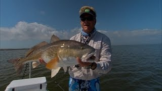 Sight Fishing Redfish Louisiana with Cajun Fishing Adventures