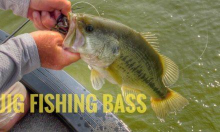Jig Fishing Strategies for LARGEMOUTH BASS