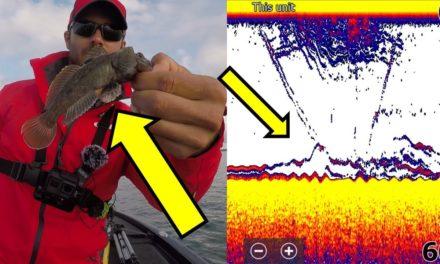 SUPRISE CATCH! WOW!!! Lake Ontario Drop Shot Bass Fishing (SUPER DEEP BASS FISHING!!)