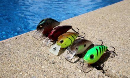 Top 5 Squarebill Crankbaits (Underwater)