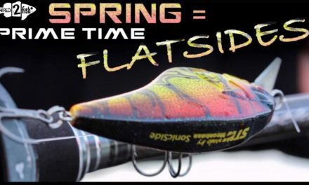 How Flat-Sided Crankbaits Excel for Springtime Bass