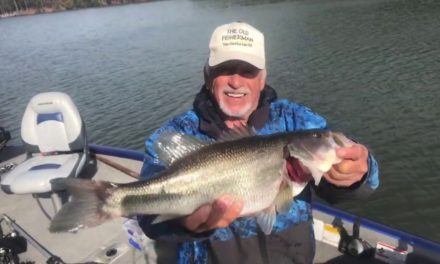 Teaching How To Catch Bass On Small Jigs
