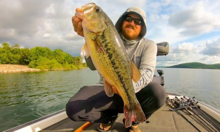 Bass Fishing Grand Slam on Table Rock Lake!