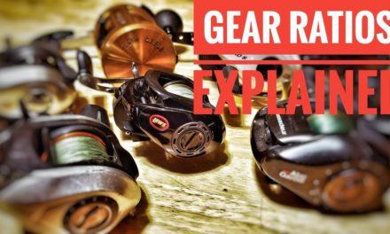 Fishing Reel GEAR RATIOS [Explained]