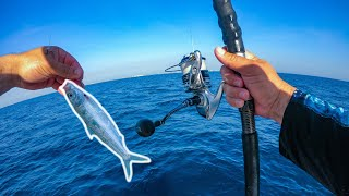 Lawson Lindsey – Florida Offshore Fishing With Live Sardines