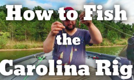 How to Fish the Carolina Rig – Bass Fishing