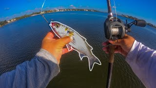 Lawson Lindsey – Sight Casting for Giant Fish with Live Mullet