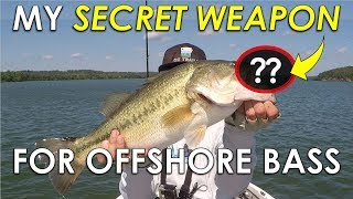 The Bait Everyone Knows About But Few Throw on Offshore Bass in the Summer!
