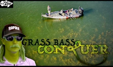 12 Tips to Master Bass Fishing Grass
