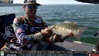 Bassmaster – Chris Zaldain loses giant and then catches big smallmouth on Cayuga