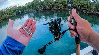 Lawson Lindsey – Fishing Live Shrimp and Artificial Shrimp Along Docks in Tropical Clear Water