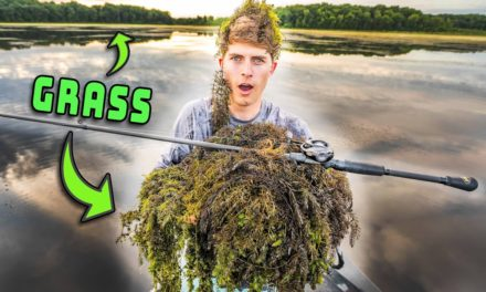 GRASS Fishing For Bass (How To Catch Fish In Weeds)