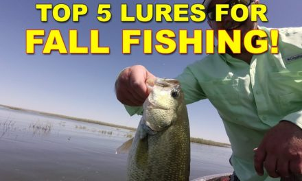 5 Best Lures For Fall Bass Fishing | Bass Fishing