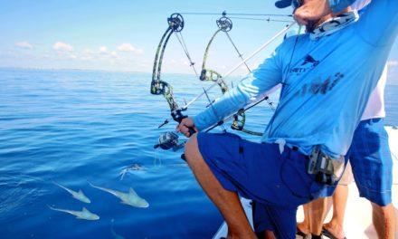 BlacktipH – Bow Fishing for Tuna Fish