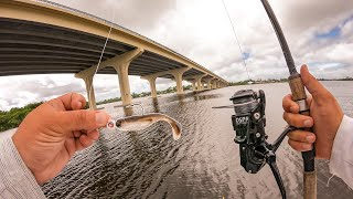 Lawson Lindsey – Exploring New Water With a New Sick Swimbait