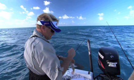 Patch Reef Fishing Florida Keys for Snapper off of Key Largo Florida
