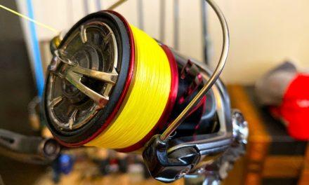 Salt Strong   – Spinning Reel Maintenance: How To Make Your Spinning Reels Last Longer