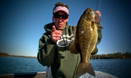 Shadow Rappin' Bass – Lindner's Fishing Edge 2015 S8