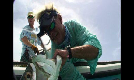 Big Tarpon Fishing Bean Point Tampa Bay Florida