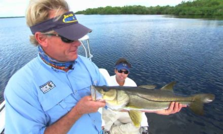 Blair Wiggins Fly Rod Fishing for Snook in Florida Everglades