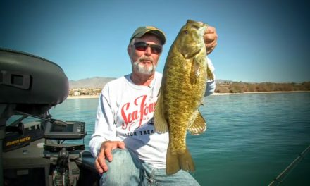 Finesse Smallies