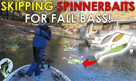 Unique Twist To Classic Fall Pattern   Fall Bass Fishing Tips