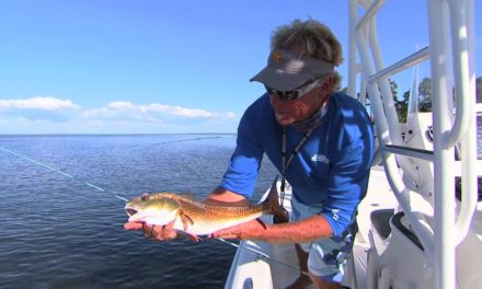 Choctawhatchee Bay Fishing For Redfish in Destin Florida